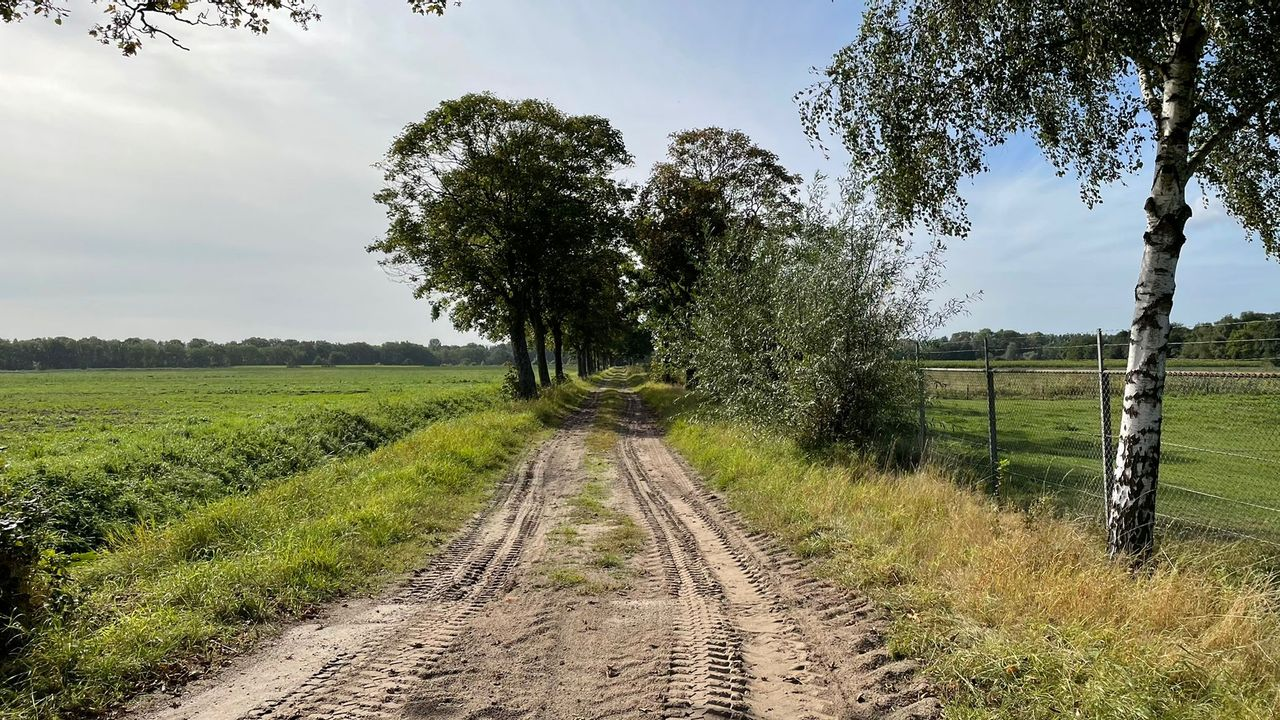 Ook Eindhovense raad mengt zich in debat Eeneind-West