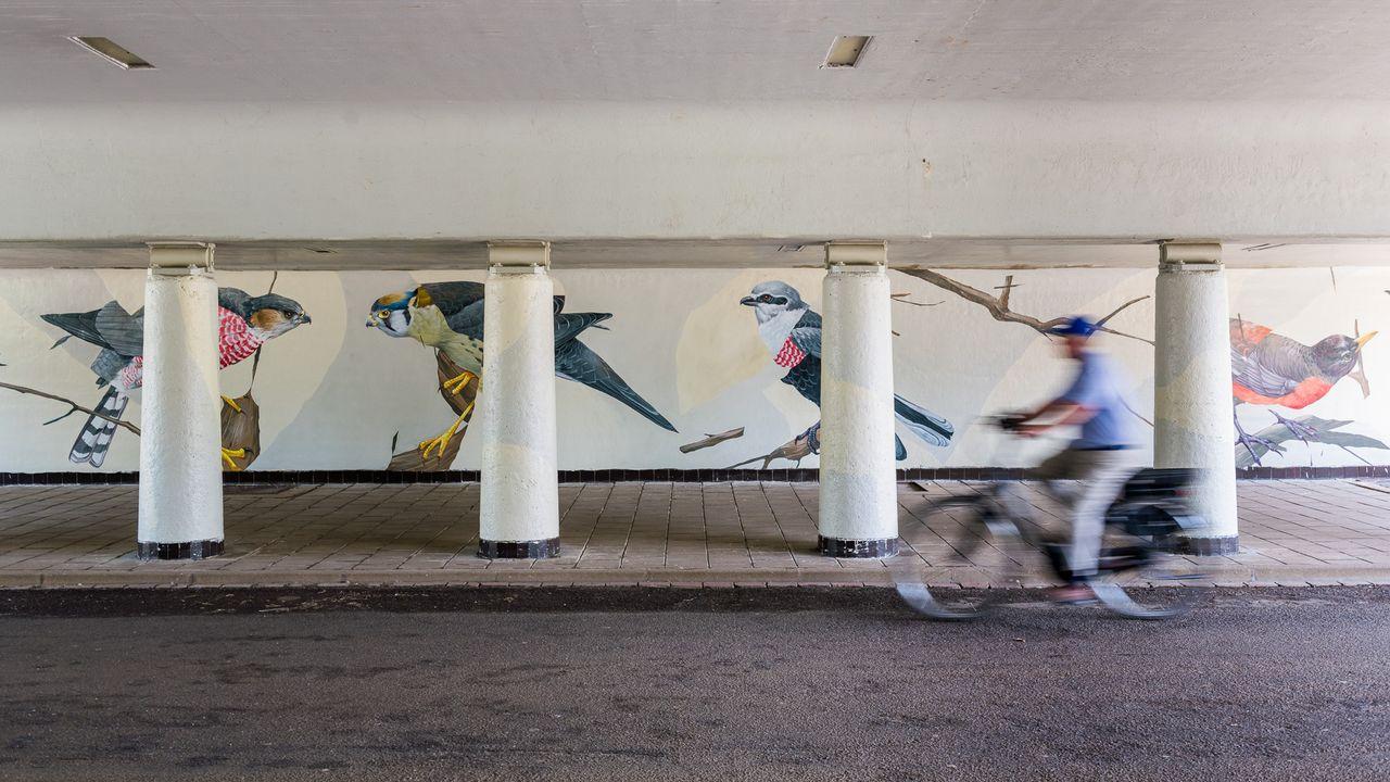 Street art onthuld in tunnel onder Boutenslaan