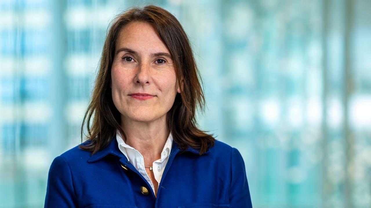 Sylvia van Es nieuwe president Philips Nederland