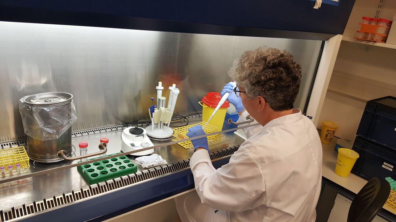 Regionaal lab kan vraag corontests maar net aan