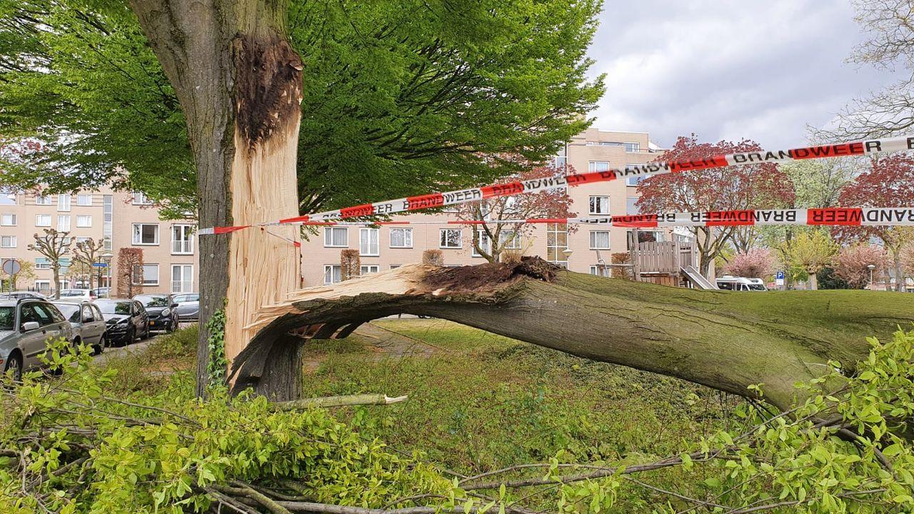 Flinke stormschade in Woensel