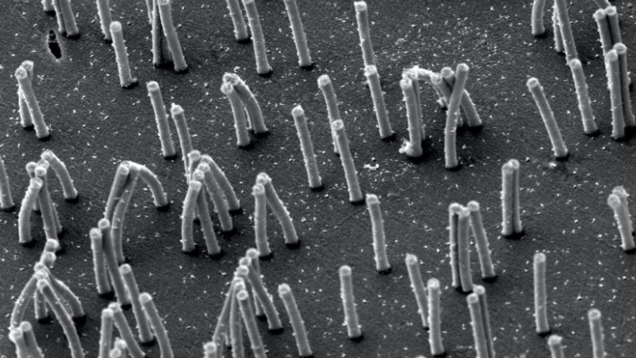 TU/e creëert minihaartjes van enkele micrometers