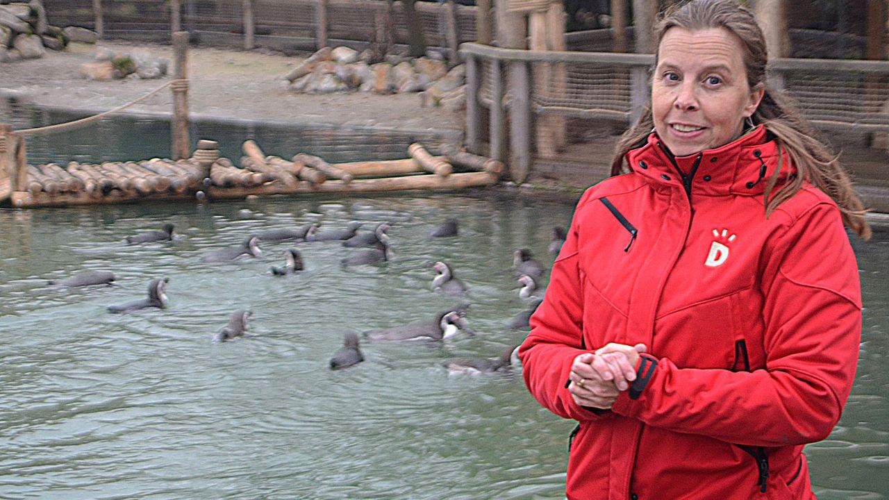 Directeur Chantal Ermers neemt afscheid van Dierenrijk