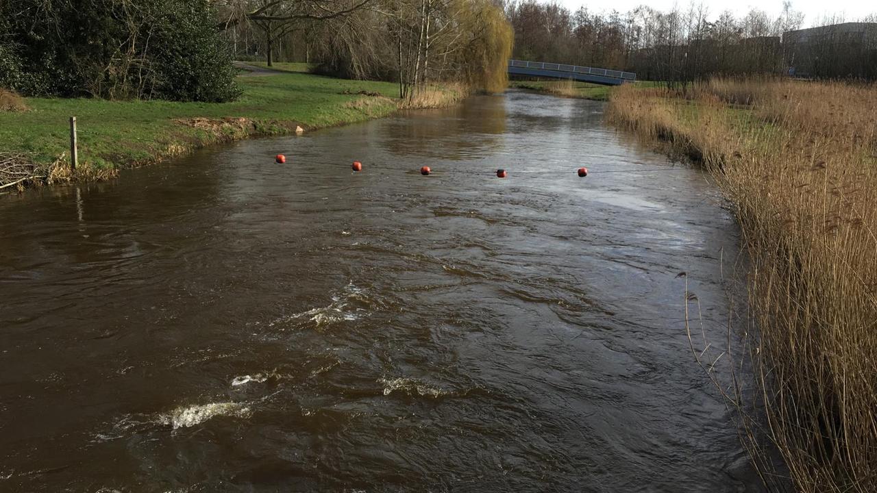 Waterschap: 'Acuut watertekort voorbij, maar elke druppel telt'