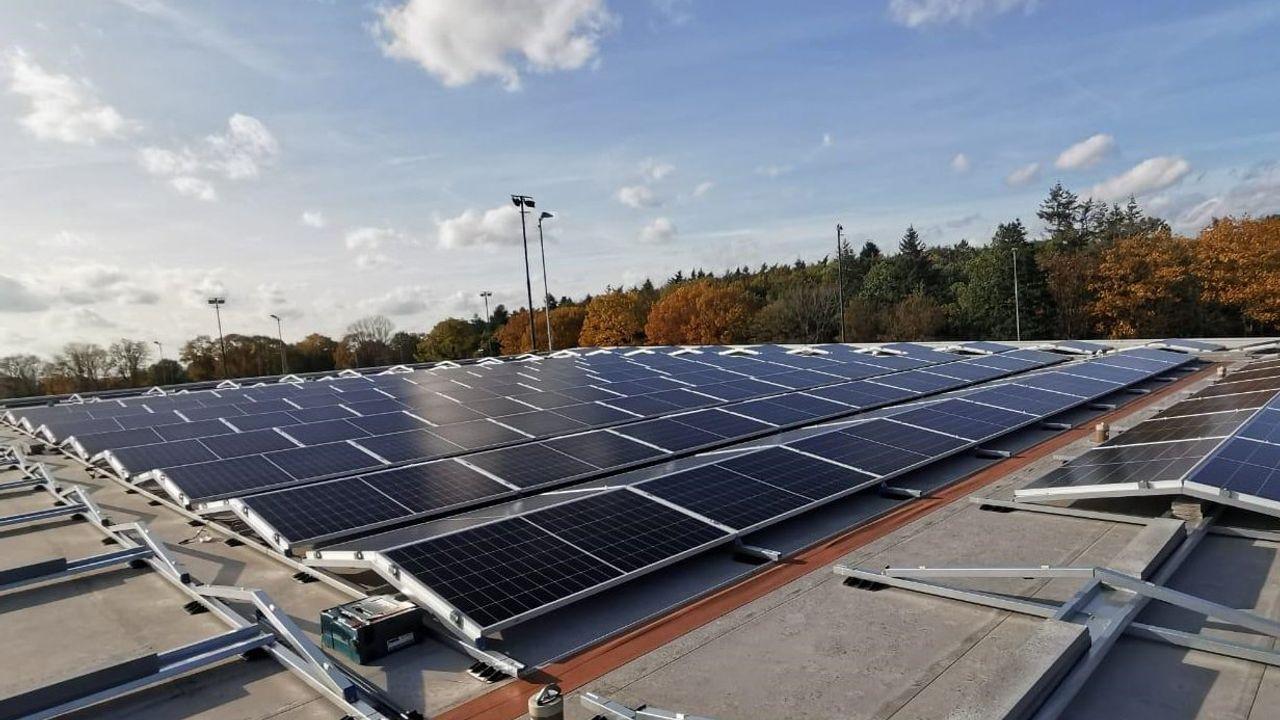 GroenLinks en D66 willen groene daken verplichten voor bedrijven