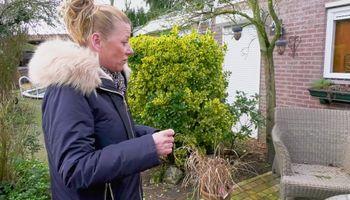 Stank- en geluidsoverlast van omwonenden slachthuis Geldrop wordt verder onderzocht
